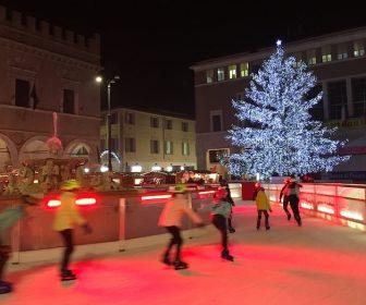albero-piazza